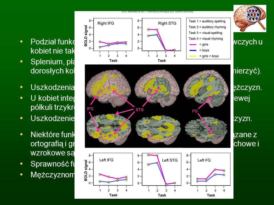 Budowa mózgu Podział funkcji półkul mózgowych i lokalizacja funkcji poznawczych u kobiet nie tak wyraźna jak u mężczyzn. Splenium, płat tylnej części