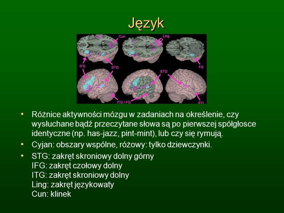 Język Różnice aktywności mózgu w zadaniach na określenie, czy wysłuchane bądź przeczytane słowa są po pierwszej spółgłosce identyczne (np. has-jazz, p