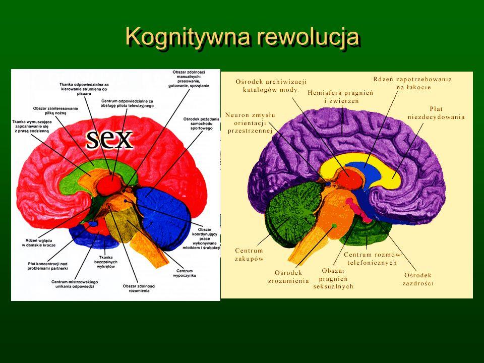 Kognitywna rewolucja Wiele dziedzin nauki przechodzi Kognitywną Rewolucję! Popularna wiedza jest jeszcze na niskim poziomie … Jaki jest sens ż ycia? N
