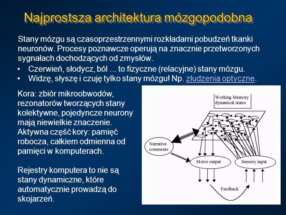Najprostsza architektura mózgopodobna Stany mózgu są czasoprzestrzennymi rozkładami pobudzeń tkanki neuronów. Procesy poznawcze operują na znacznie pr