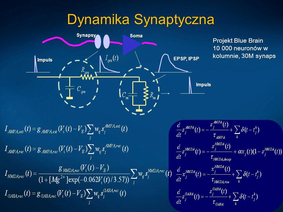 Dynamika Synaptyczna EPSP, IPSP Impuls Impuls Soma Synapsy Projekt Blue Brain 10 000 neuronów w kolumnie, 30M synaps