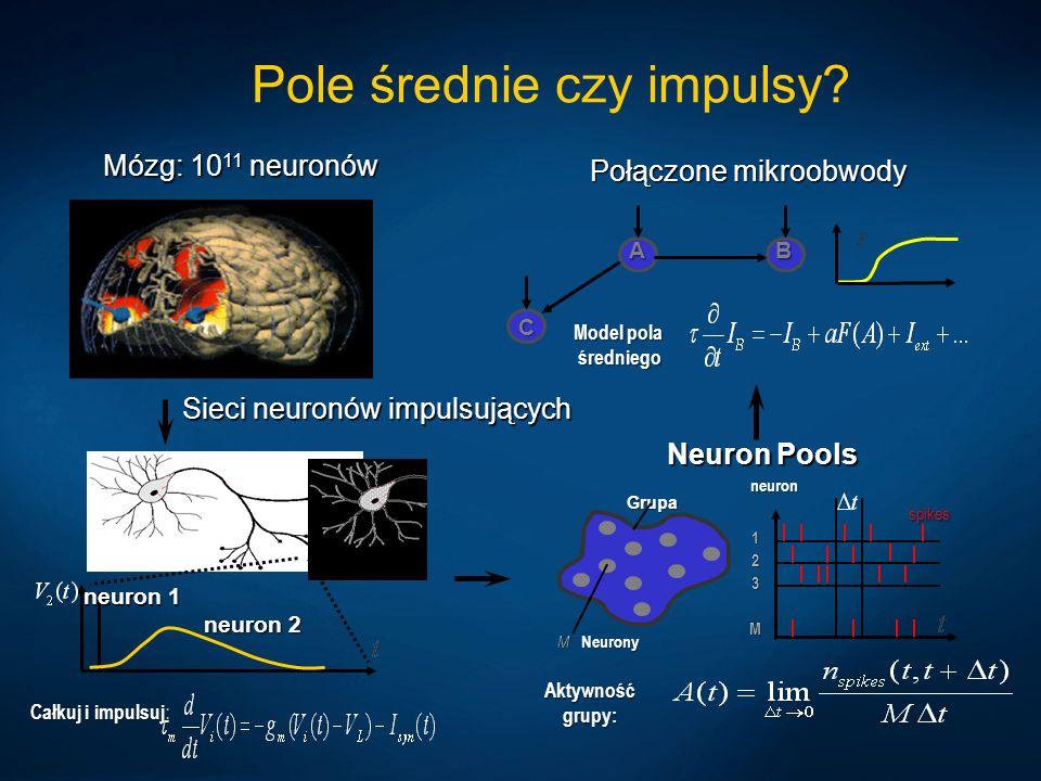 Pole średnie czy impulsy? Mózg: 10 11 neuronów Neuron Pools Aktywność grupy: Grupa M Neurony neuron 123M spikes Połączone mikroobwody A C B Model pola
