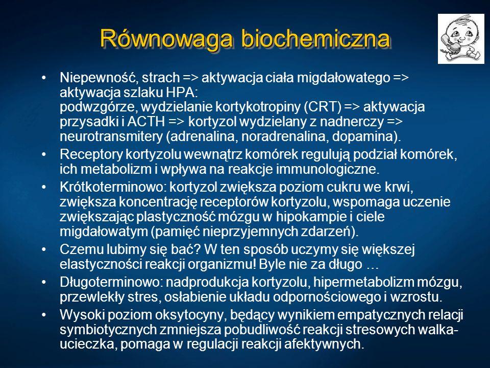 Równowaga biochemiczna Niepewność, strach => aktywacja ciała migdałowatego => aktywacja szlaku HPA: podwzgórze, wydzielanie kortykotropiny (CRT) => ak