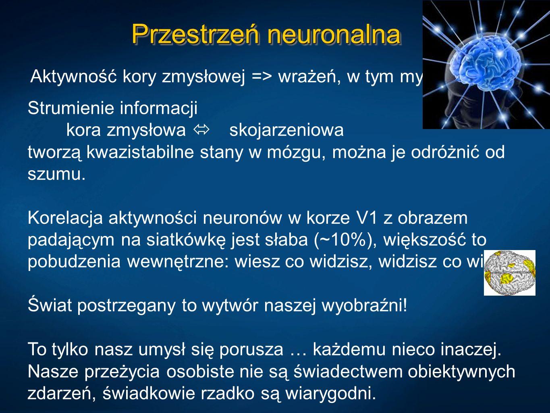 Przestrzeń neuronalna Aktywność kory zmysłowej => wrażeń, w tym myśli. Strumienie informacji kora zmysłowa skojarzeniowa tworzą kwazistabilne stany w