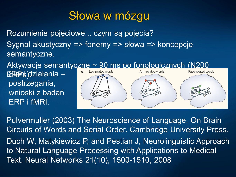 Słowa w mózgu Rozumienie pojęciowe.. czym są pojęcia? Sygnał akustyczny => fonemy => słowa => koncepcje semantyczne. Aktywacje semantyczne ~ 90 ms po