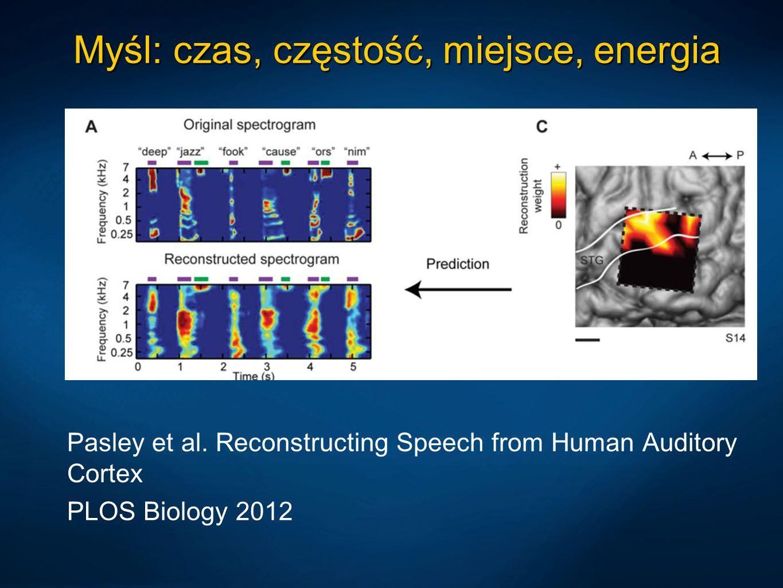 Myśl: czas, częstość, miejsce, energia Pasley et al. Reconstructing Speech from Human Auditory Cortex PLOS Biology 2012