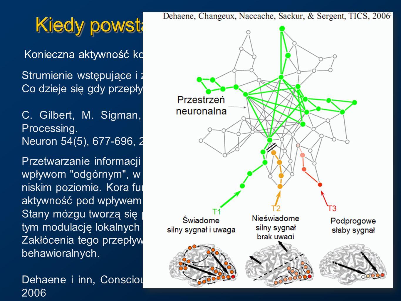 Kiedy powstają świadome wrażenia? Konieczna aktywność kory zmysłowej, np. V4=kolor, MT/V5=ruch. Strumienie wstępujące i zstępujące łączą się, tworząc