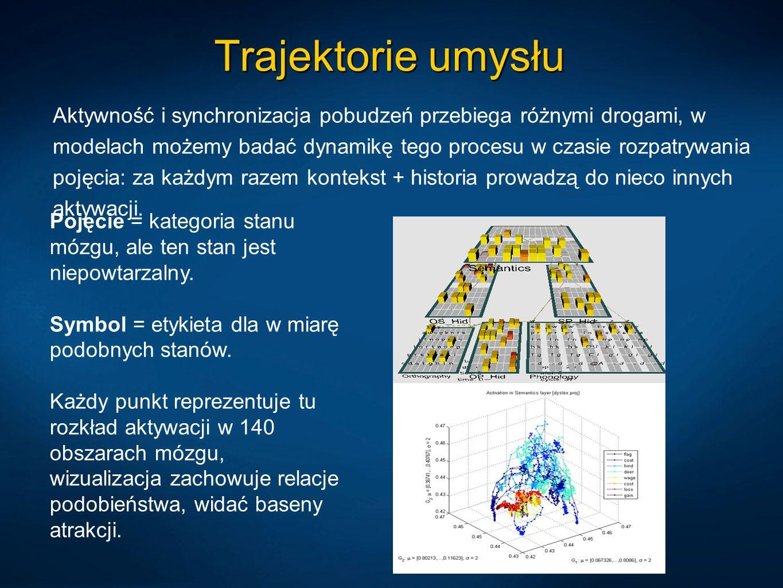 Trajektorie umysłu Aktywność i synchronizacja pobudzeń przebiega różnymi drogami, w modelach możemy badać dynamikę tego procesu w czasie rozpatrywania