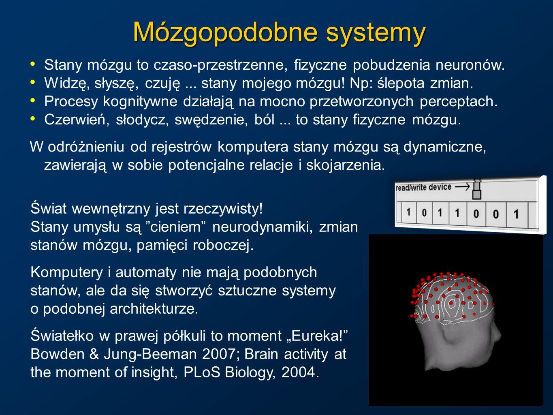 Mózgopodobne systemy Stany mózgu to czaso-przestrzenne, fizyczne pobudzenia neuronów. Widzę, słyszę, czuję... stany mojego mózgu! Np: ślepota zmian. P