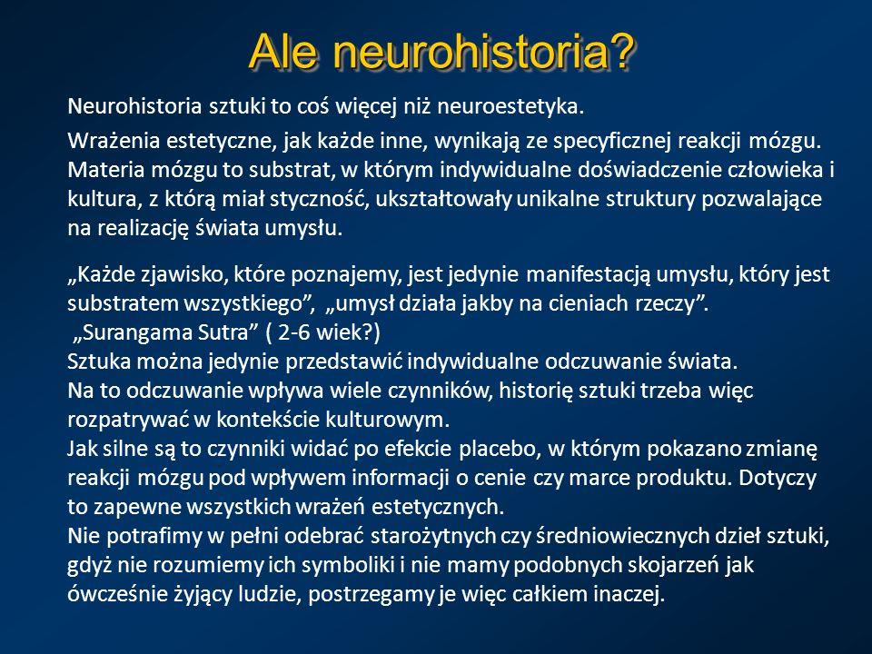 Ale neurohistoria? Neurohistoria sztuki to coś więcej niż neuroestetyka. Wrażenia estetyczne, jak każde inne, wynikają ze specyficznej reakcji mózgu.