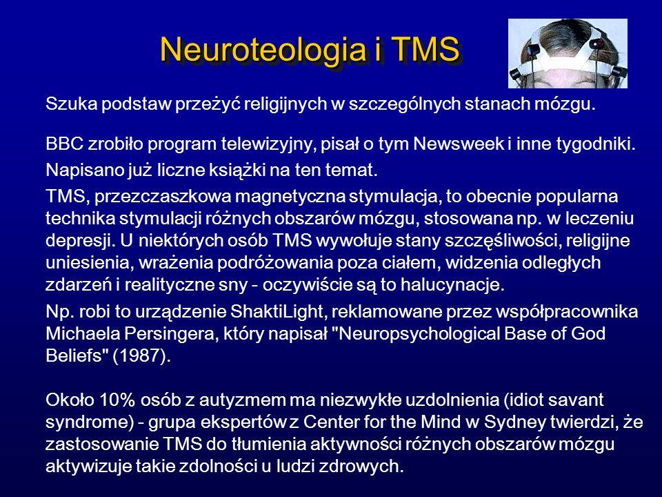 Neuroteologia i TMS Szuka podstaw przeżyć religijnych w szczególnych stanach mózgu. BBC zrobiło program telewizyjny, pisał o tym Newsweek i inne tygod