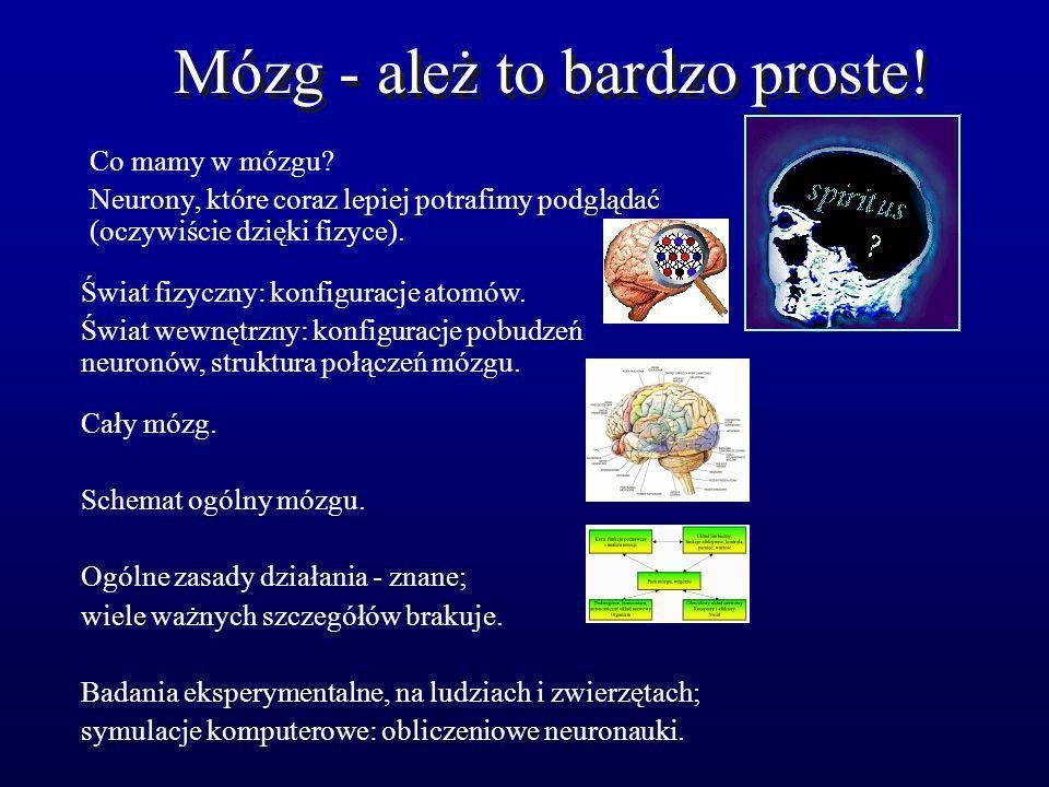 Mózg - ależ to bardzo proste! Co mamy w mózgu? Neurony, które coraz lepiej potrafimy podglądać (oczywiście dzięki fizyce). Świat fizyczny: konfiguracj