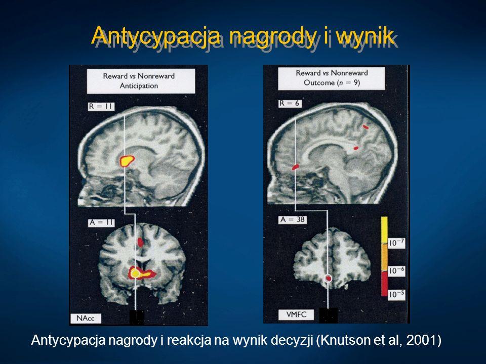 Antycypacja nagrody i wynik Antycypacja nagrody i reakcja na wynik decyzji (Knutson et al, 2001)