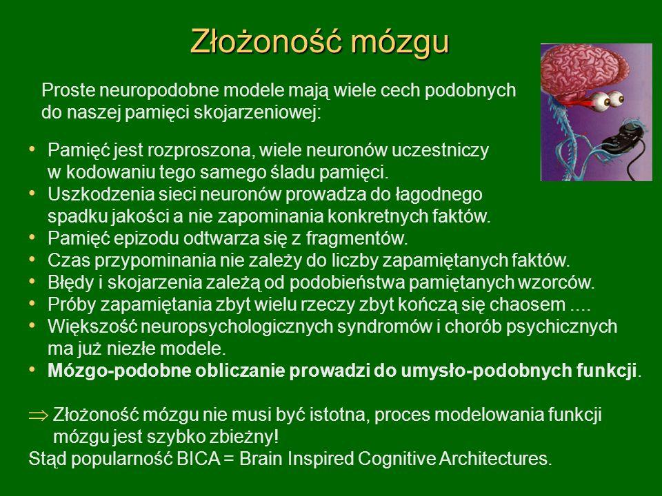 Złożoność mózgu Proste neuropodobne modele mają wiele cech podobnych do naszej pamięci skojarzeniowej: Pamięć jest rozproszona, wiele neuronów uczestniczy w kodowaniu tego samego śladu pamięci.