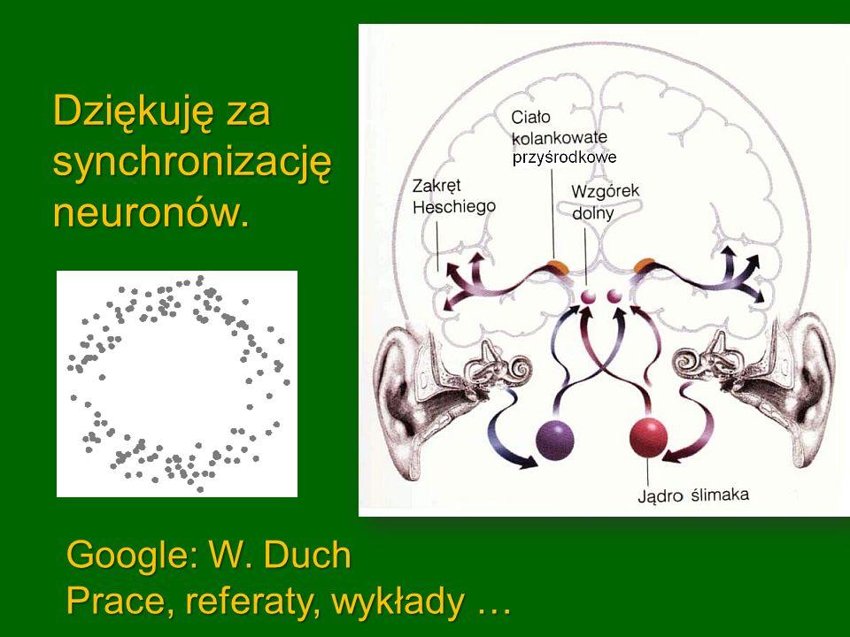 Dziękuję za synchronizację neuronów. Google: W. Duch Prace, referaty, wykłady …