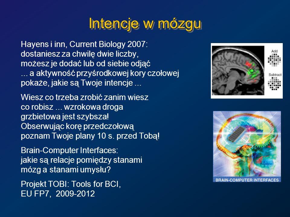 Intencje w mózgu Hayens i inn, Current Biology 2007: dostaniesz za chwilę dwie liczby, możesz je dodać lub od siebie odjąć... a aktywność przyśrodkowe