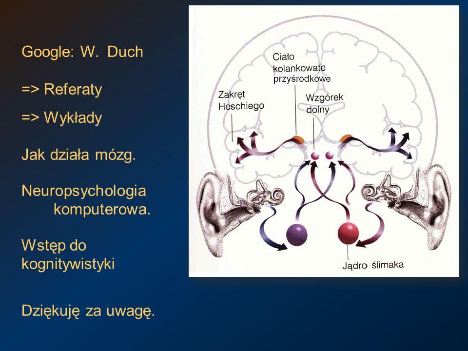 Google: W. Duch => Referaty => Wykłady Jak działa mózg. Neuropsychologia komputerowa. Wstęp do kognitywistyki Dziękuję za uwagę.