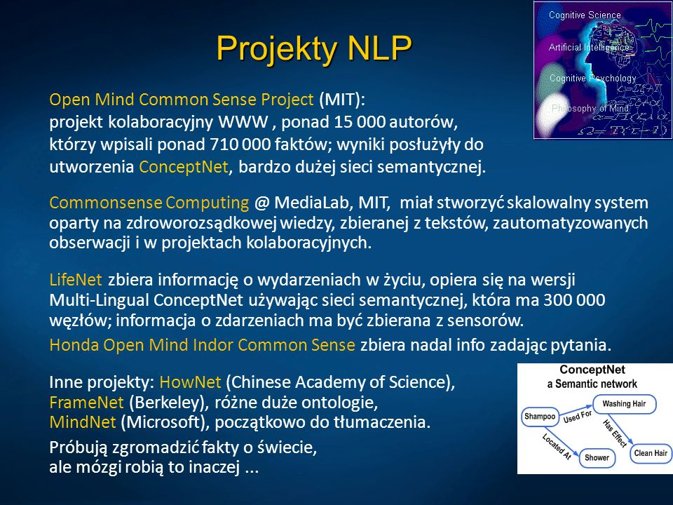 Projekty NLP Open Mind Common Sense Project (MIT): projekt kolaboracyjny WWW, ponad 15 000 autorów, którzy wpisali ponad 710 000 faktów; wyniki posłużyły do utworzenia ConceptNet, bardzo dużej sieci semantycznej.