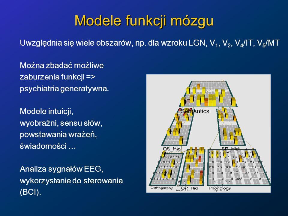 Modele funkcji mózgu Uwzględnia się wiele obszarów, np. dla wzroku LGN, V 1, V 2, V 4 /IT, V 5 /MT Można zbadać możliwe zaburzenia funkcji => psychiat