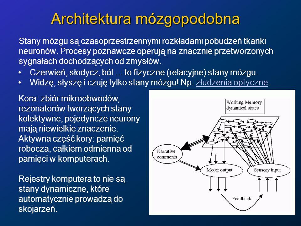 Architektura mózgopodobna Stany mózgu są czasoprzestrzennymi rozkładami pobudzeń tkanki neuronów. Procesy poznawcze operują na znacznie przetworzonych
