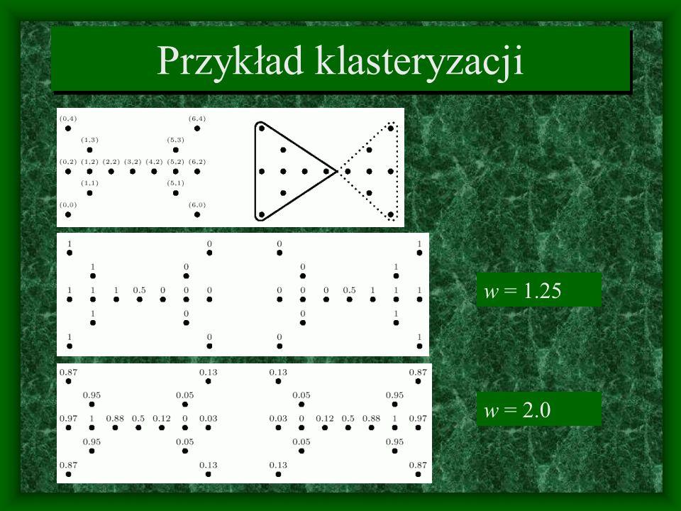 Przykład klasteryzacji w = 1.25 w = 2.0