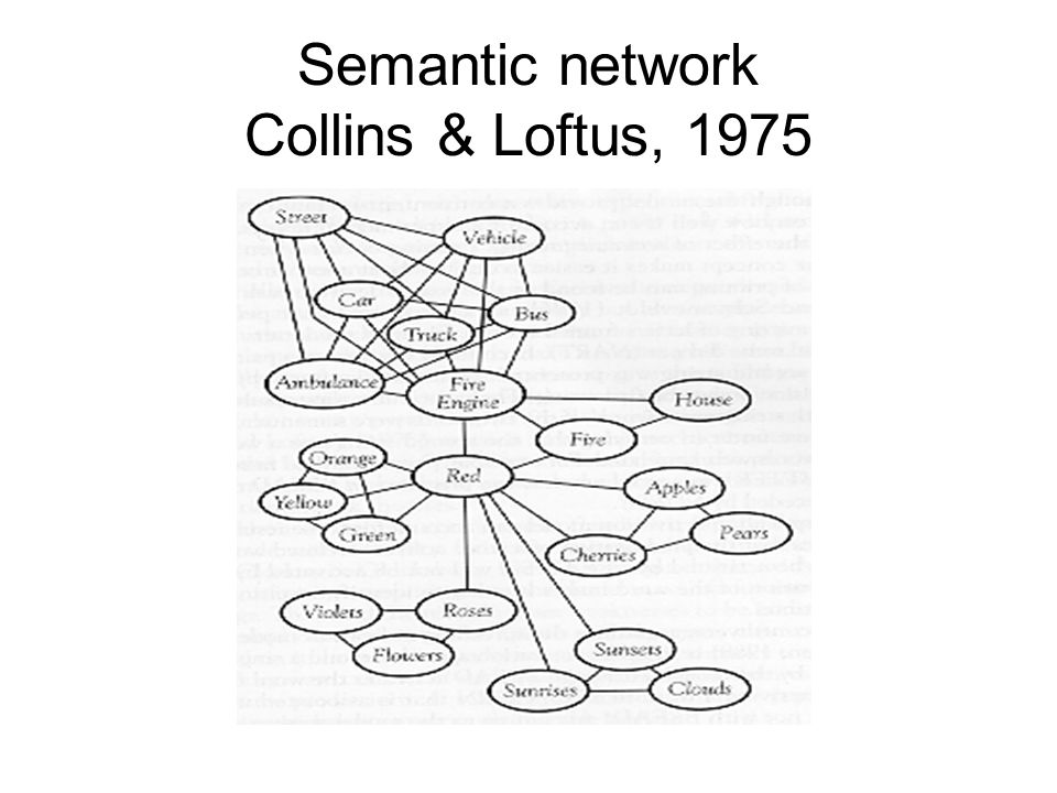 Semantic network Collins & Loftus, 1975