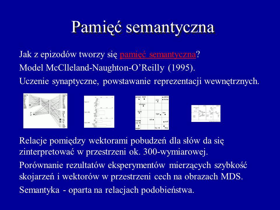 Działanie sieci Sprawności synaptyczne: tylko LTP i LTD, ok. 5x słabsze. Depolaryzacja membrany V(t) o 10ms opisana jest równaniem: Wyniki symulacji p