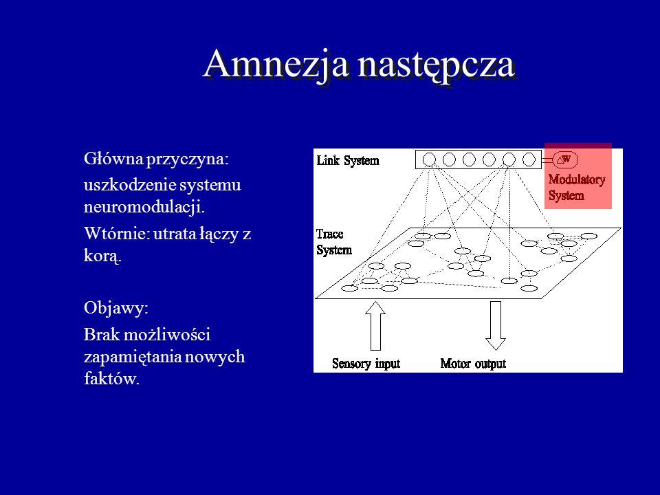Amnezja wsteczna Główna przyczyna: utrata łączy do kory. Objawy: gradienty Ribota czyli im starsze wspomnienia tym lepiej pamiętane.