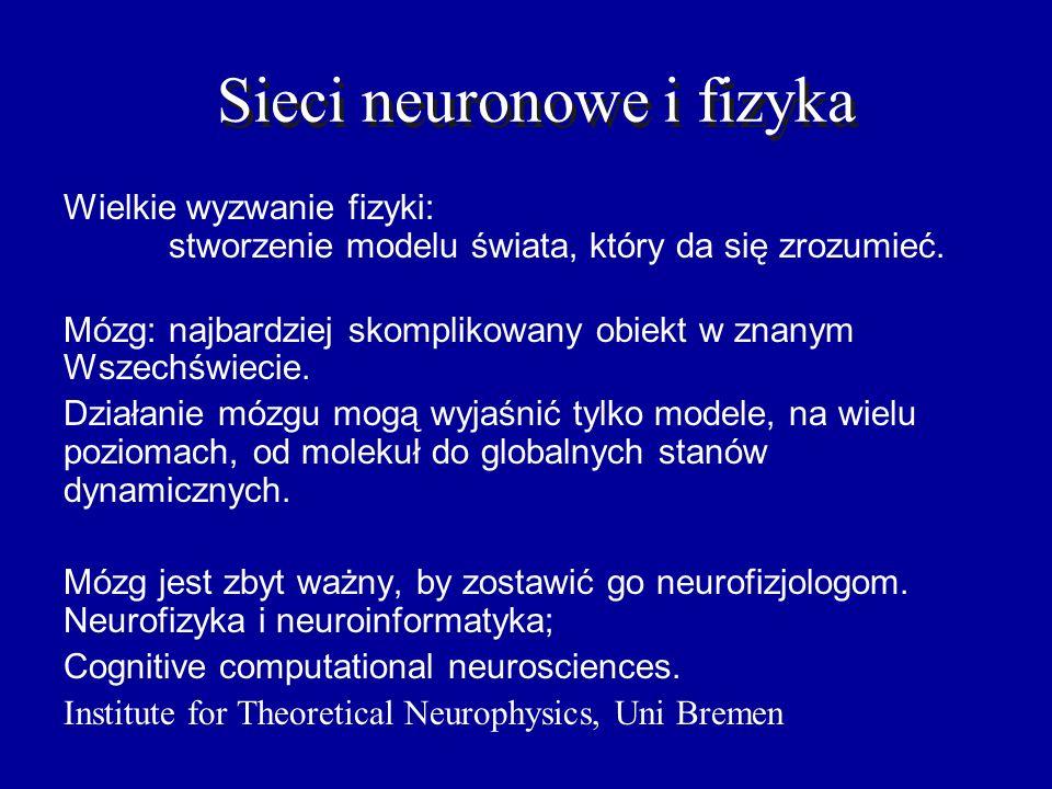 Działanie sieci Sprawności synaptyczne: tylko LTP i LTD, ok.