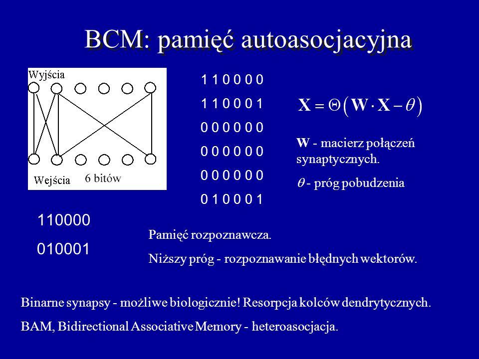 BCM: pamięć autoasocjacyjna 110000 010001 1 1 0 0 0 0 1 1 0 0 0 1 0 0 0 0 0 0 0 0 0 0 0 0 0 0 0 0 0 0 0 1 0 0 0 1 Pamięć rozpoznawcza.