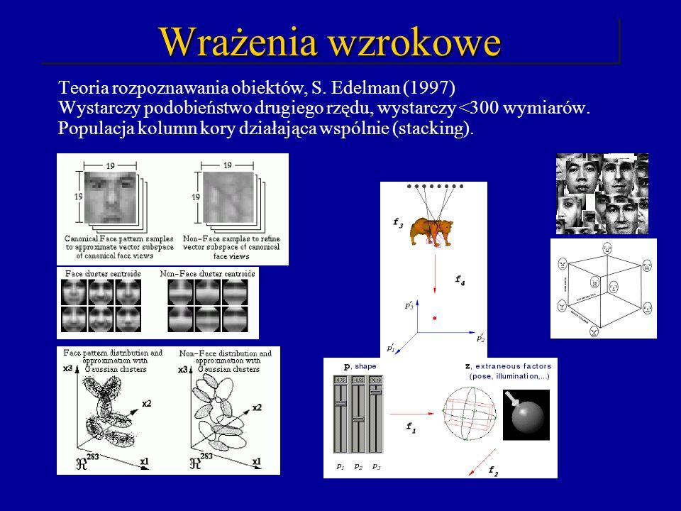Wrażenia wzrokowe Teoria rozpoznawania obiektów, S. Edelman (1997) Wystarczy podobieństwo drugiego rzędu, wystarczy <300 wymiarów. Populacja kolumn ko