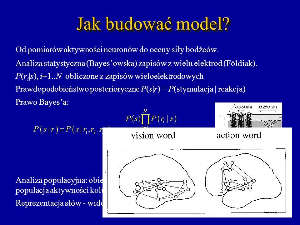 Jak budować model? Od pomiarów aktywności neuronów do oceny siły bodźców. Analiza statystyczna (Bayesowska) zapisów z wielu elektrod (Földiak). P(r i