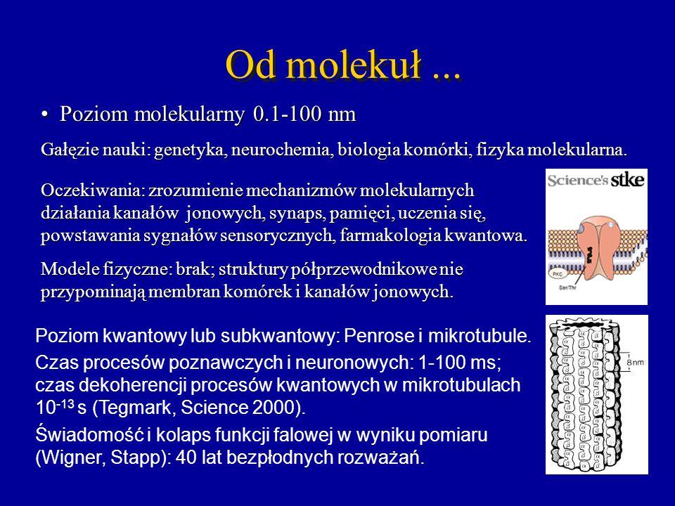 Od molekuł... Poziom molekularny 0.1-100 nm Poziom molekularny 0.1-100 nm Gałęzie nauki: genetyka, neurochemia, biologia komórki, fizyka molekularna.