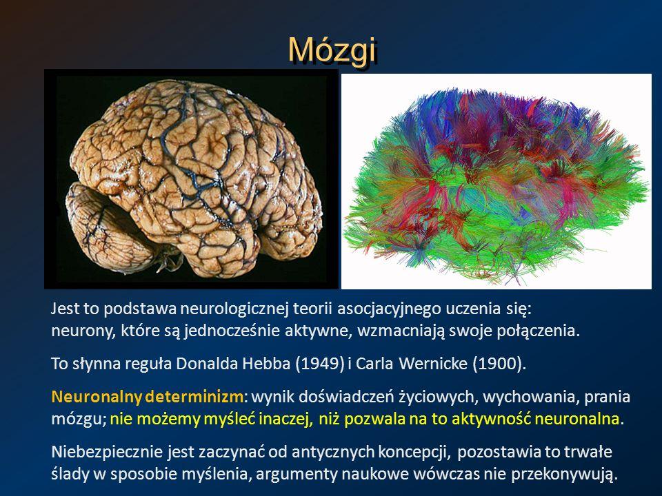 Neuronalny determinizm Geny określają charakter, predyspozycje, zdolności, ale nie konkretne decyzje.