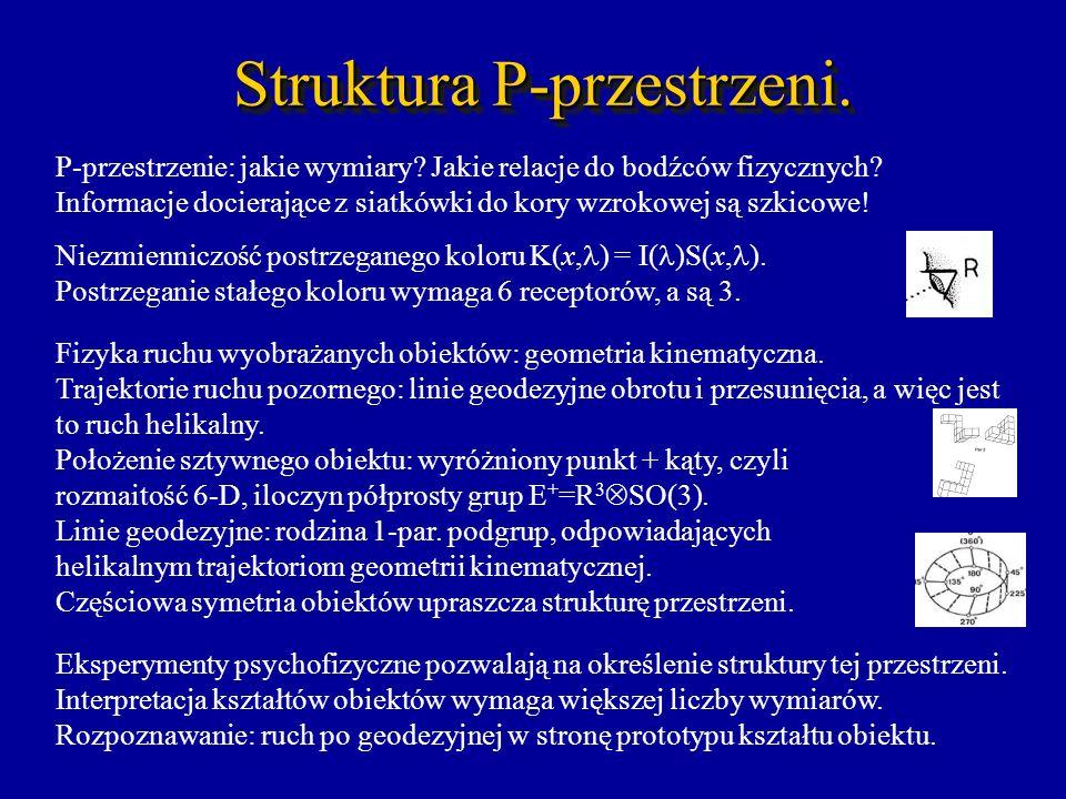 Struktura P-przestrzeni. P-przestrzenie: jakie wymiary? Jakie relacje do bodźców fizycznych? Informacje docierające z siatkówki do kory wzrokowej są s