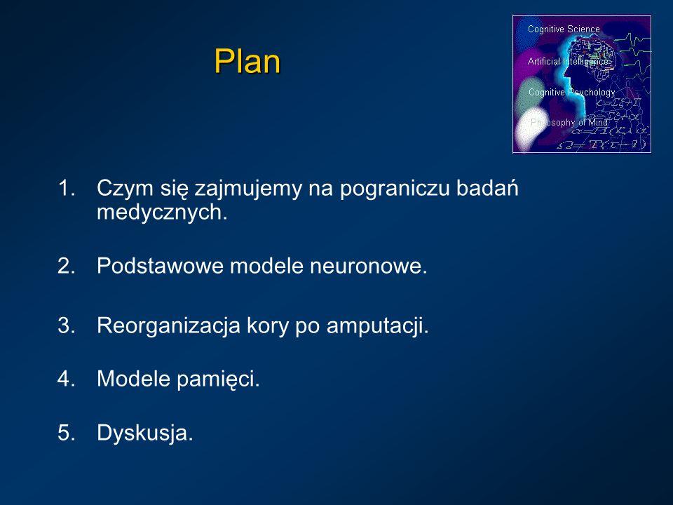 Plan 1.Czym się zajmujemy na pograniczu badań medycznych. 2.Podstawowe modele neuronowe. 3.Reorganizacja kory po amputacji. 4.Modele pamięci. 5.Dyskus
