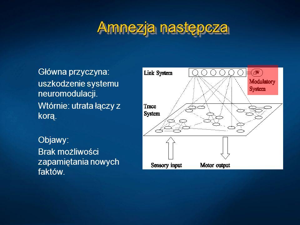 Amnezja następcza Główna przyczyna: uszkodzenie systemu neuromodulacji. Wtórnie: utrata łączy z korą. Objawy: Brak możliwości zapamiętania nowych fakt
