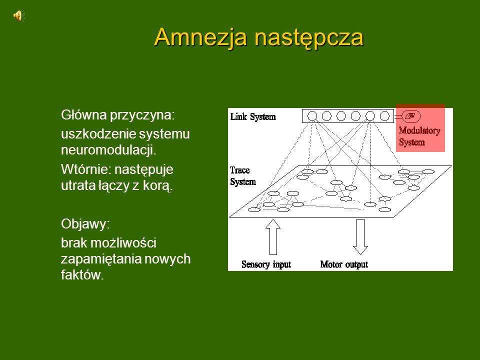 Amnezja następcza Główna przyczyna: uszkodzenie systemu neuromodulacji. Wtórnie: następuje utrata łączy z korą. Objawy: brak możliwości zapamiętania n