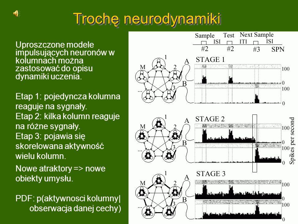 Trochę neurodynamiki Uproszczone modele impulsujących neuronów w kolumnach można zastosować do opisu dynamiki uczenia. Nowe atraktory => nowe obiekty