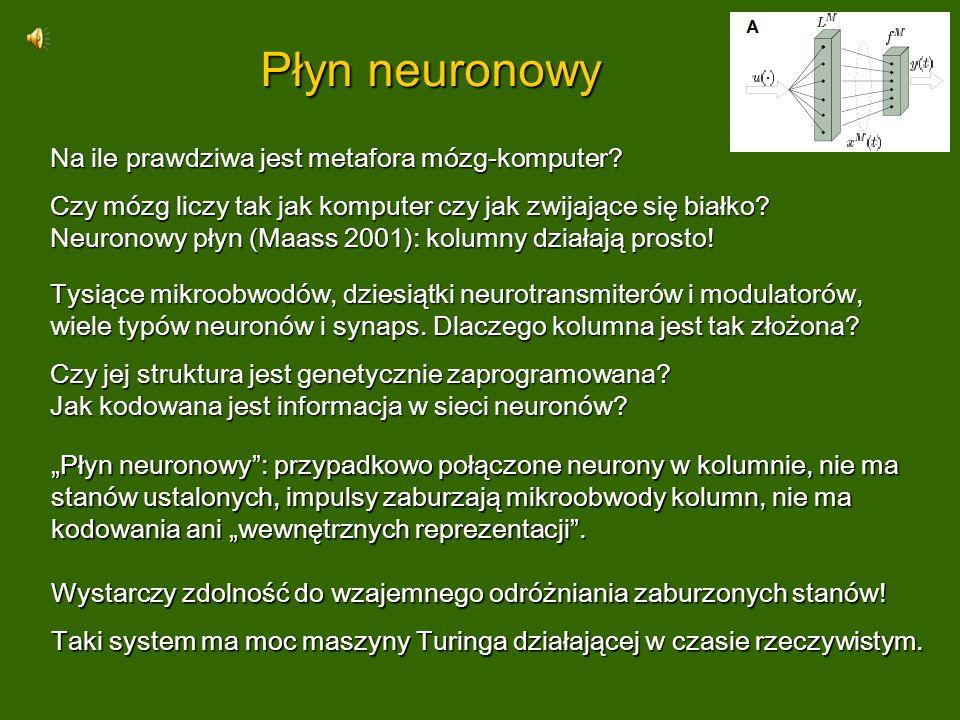 Płyn neuronowy Na ile prawdziwa jest metafora mózg-komputer? Czy mózg liczy tak jak komputer czy jak zwijające się białko? Neuronowy płyn (Maass 2001)