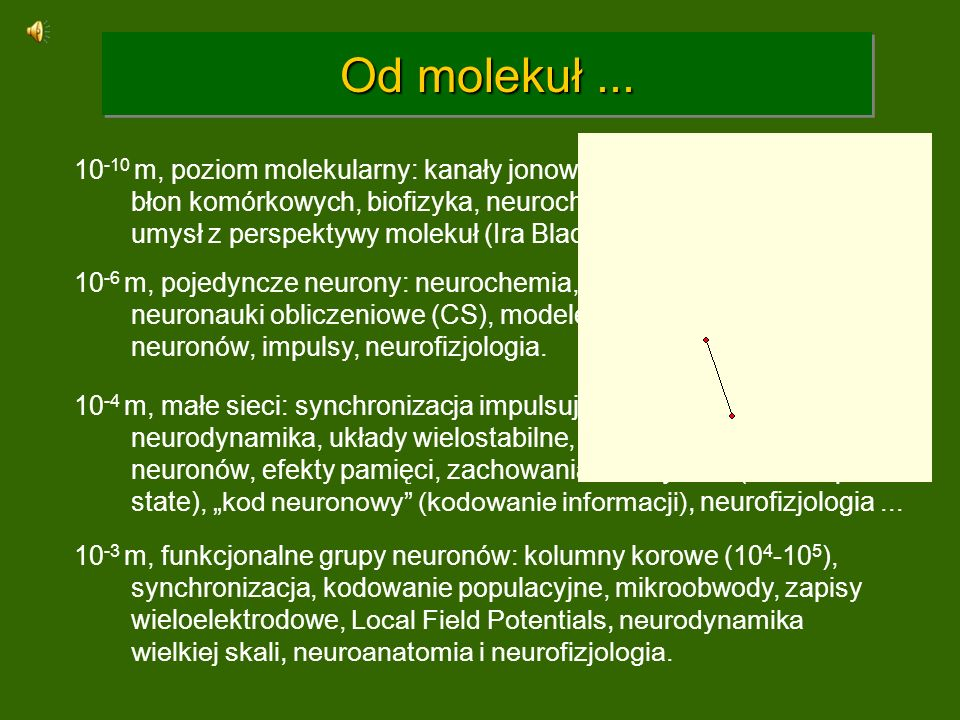 Organizacja hierarchiczna Dokładniejsze modele: przepływ informacji i kooperacja elementów na różnym poziomie wymaga hierarchicznej i modularnej organizacji: 6 warstw, neurony => mikrokolumny ~ 110 neuronów.