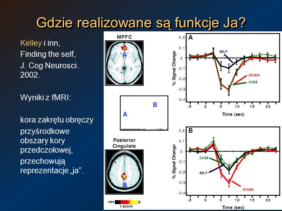 Gdzie realizowane są funkcje Ja? Kelley i inn, Finding the self, J. Cog Neurosci. 2002. Wyniki z fMRI: kora zakrętu obręczy przyśrodkowe obszary kory