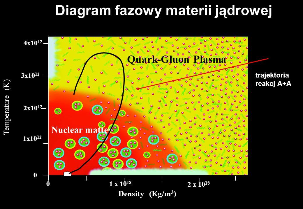 Ewolucja w czasie zderzenia (Bjorken) e Przestrzeń Czas jetjet Au Ekspansja p K QGP e T = 170 MeV = 0.6GeV/fm 3 T = 120 MeV = 0.06 GeV/fm 3 T = 230 Me