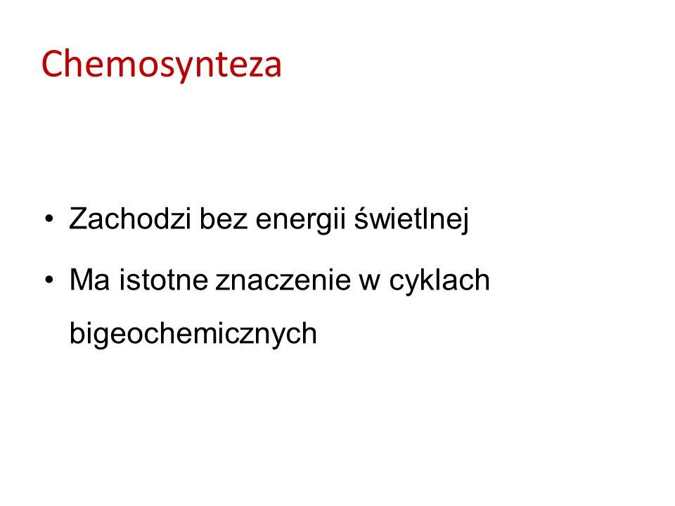Bakterie chemosyntetyzujące podzielono na: –Bakterie nitryfikacyjne: –bakterie z rodzaju Nitrosomonas (wykorzystują utlenianie amoniaku do azotynów - soli kwasu azotowego(IIII): 2NH 3 + 3O 2 2HNO 2 + 2H 2 O + ENERGIA (ok.