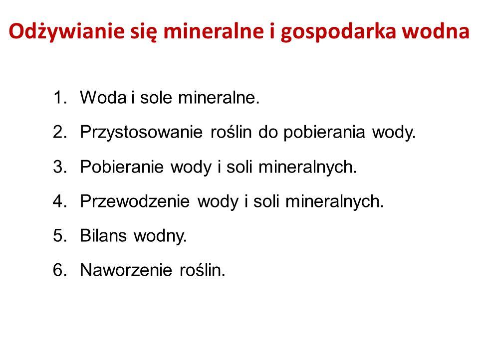 Odżywianie się mineralne i gospodarka wodna 1.Woda i sole mineralne. 2.Przystosowanie roślin do pobierania wody. 3.Pobieranie wody i soli mineralnych.