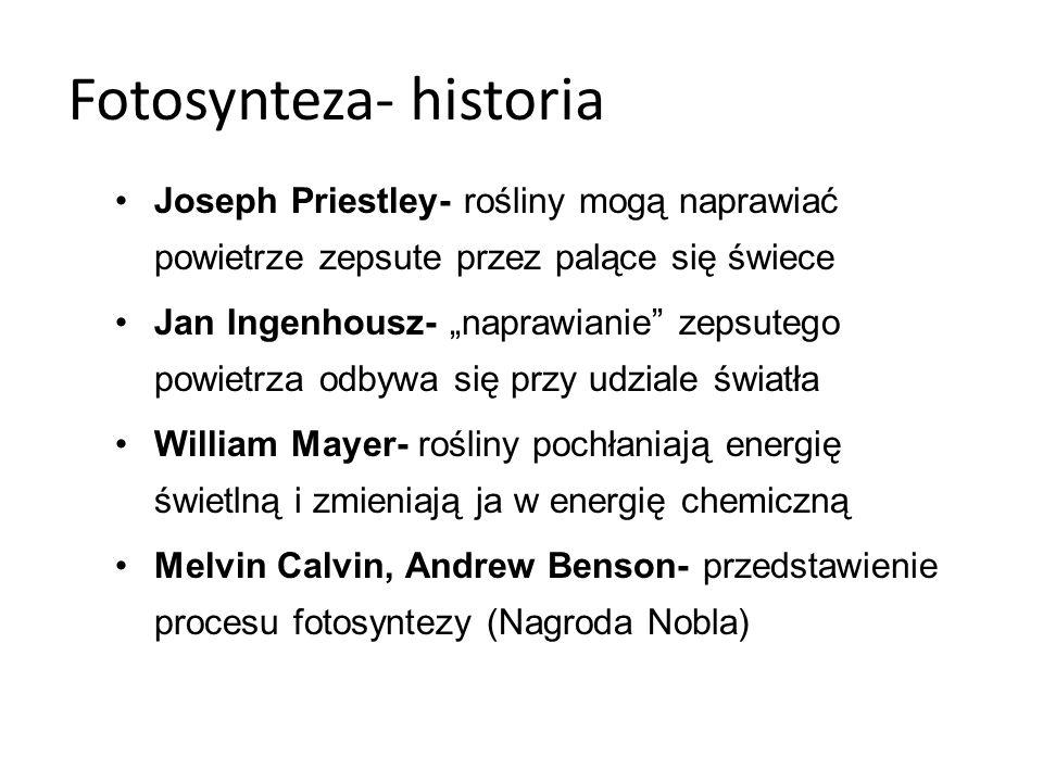 Fotosynteza- definicja To proces polegający na przenikaniu CO i H O przy użyciu energii świetlnej oraz barwnika (chlorofilu), w wyniku tego procesu wytwarzane są cukry proste (glukoza) oraz tlen.