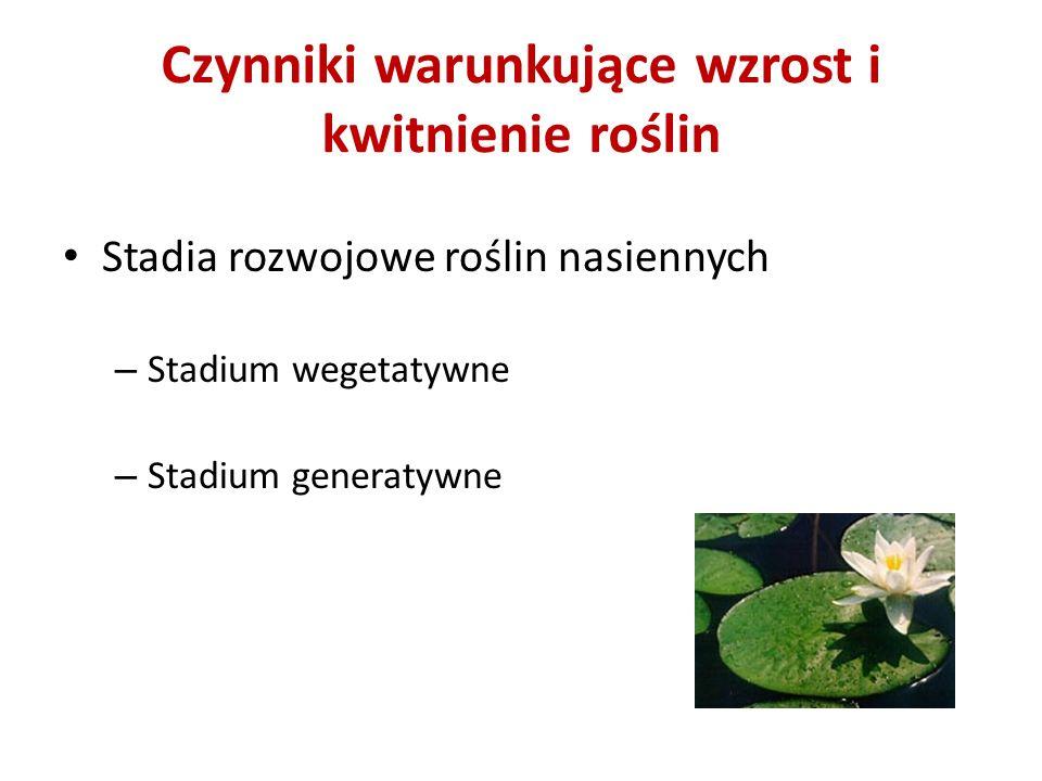 Stadium wegetatywne Nasiona str.