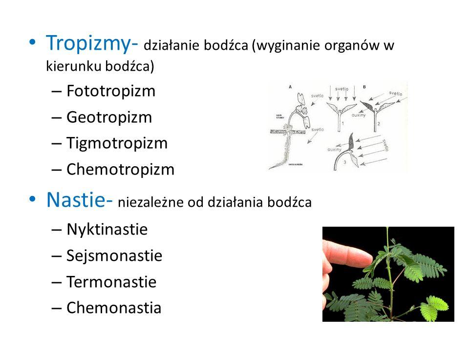 Hormony roślinne Regulatory wzrostu i rozwoju: – Auksyny – Gibereliny – Cytokininy – Etylen – Kwas abscysynowy