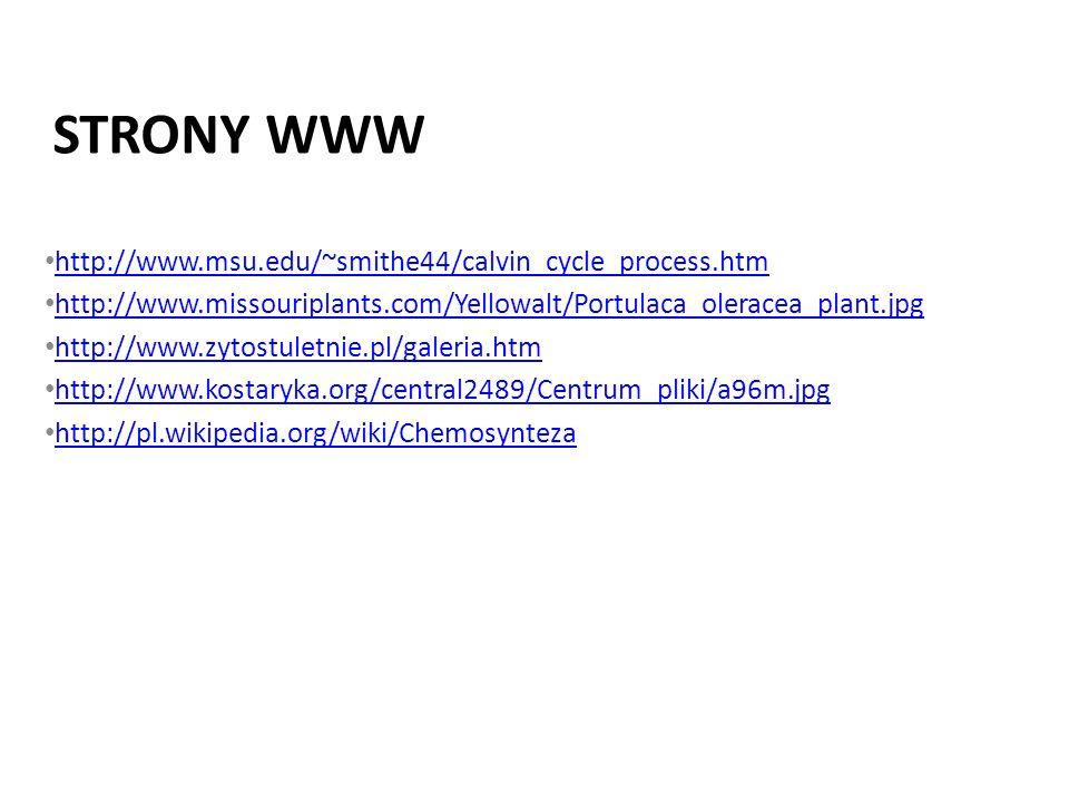 STRONY WWW http://www.msu.edu/~smithe44/calvin_cycle_process.htm http://www.missouriplants.com/Yellowalt/Portulaca_oleracea_plant.jpg http://www.zytos