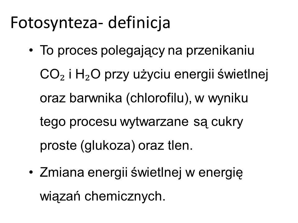 Reakcja chemiczna fotosyntezy: 6 H O + 6CO C H O + 6O -2872 KJ